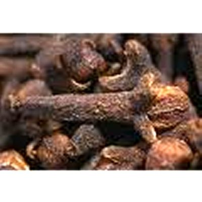 Clove bud essential oil